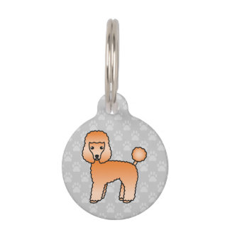 Lovely Apricot Toy Poodle Dog And Pet's Own Info Pet Name Tag