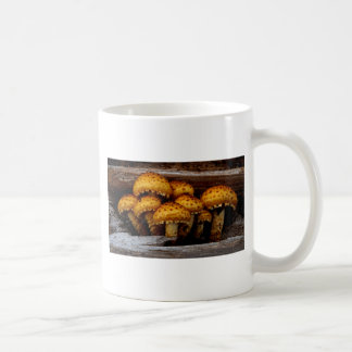 Lovely Bunch of Wild Mushrooms Coffee Mug
