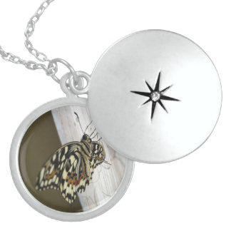Lovely Butterfly,Medium Silver Plated Round Locket