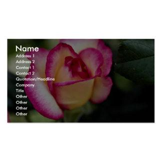 Lovely Hybrid Tea Rose Business Card Templates
