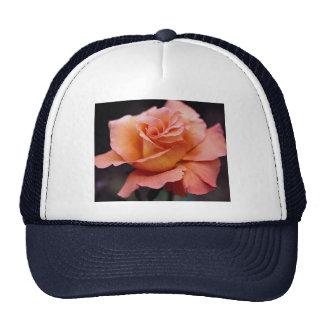 Lovely Hybrid Tea Rose Trucker Hats