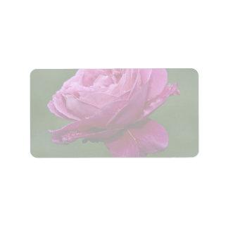 Lovely Hybrid Tea Rose 'Heirloom' Address Label