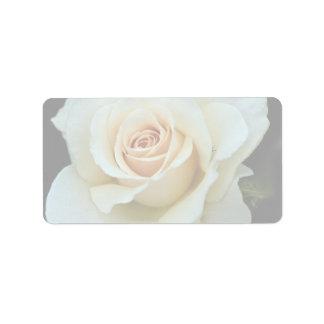 Lovely Hybrid Tea Rose Address Label