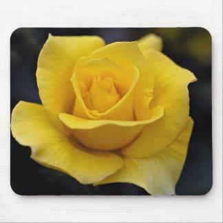 Lovely Hybrid Tea Rose Mousepad