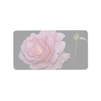 Lovely Hybrid Tea Rose 'Tiffany' Address Label