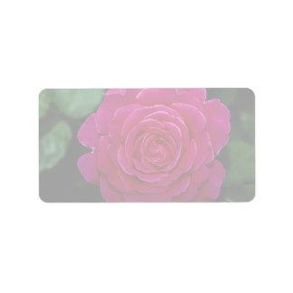 Lovely Hybrid Tea Rose 'Tiffany'leaves Address Label