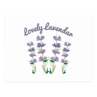 Lovely Lavendar Postcard