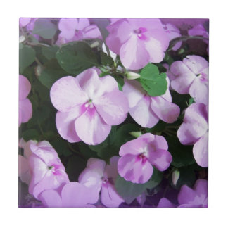 Lovely Lavender Impatiens Ceramic Tile