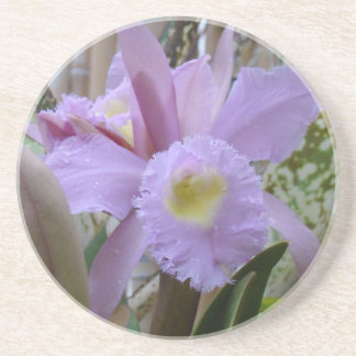 Lovely Lavender Orchid Coaster