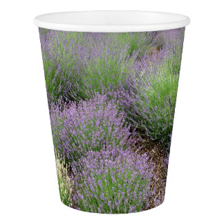 Lovely Lavender Paper Cup