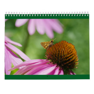 Lovely Lepidoptera - Butterfly and Moth Calendar