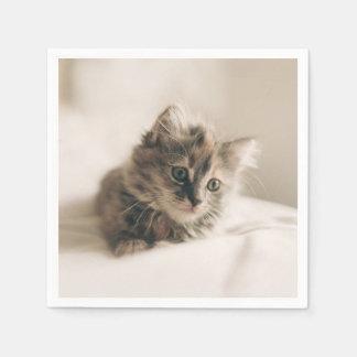 Lovely Little Kitten Cat Kitty Disposable Serviette