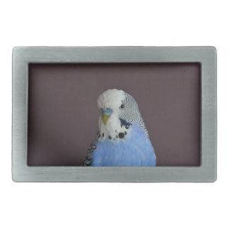 Lovely Macro Budgie Bird Belt Buckle