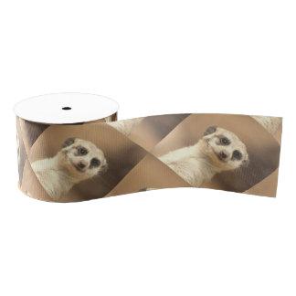 Lovely meerkat grosgrain ribbon