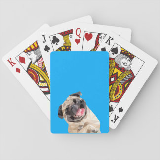 Lovely mops dog playing cards