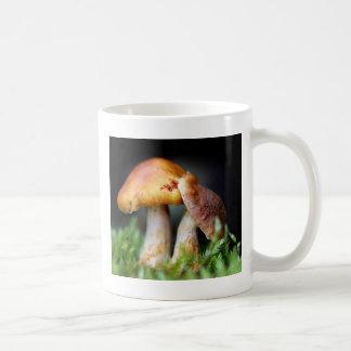 Lovely mushroom coffee mug