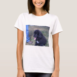 Lovely Newfie puppy (Newfoundland dog breed) T-Shirt