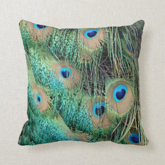 Lovely Peacock Feathers With New Grouch Cushion