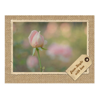 Lovely Pink Autumn Rose Bud Vintage Paper Frame Postcard