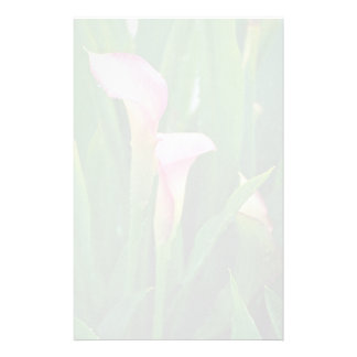 Lovely Pink calla lily Stationery