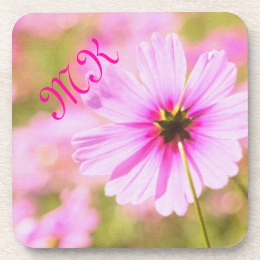 Lovely Pink Cosmos Field Flower Park Painterly Coasters