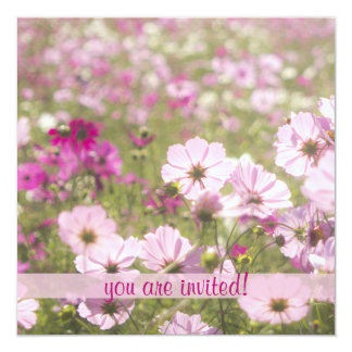 "Lovely Pink Cosmos Flower Field Meadow Sunlight 5.25"" Square Invitation Card"