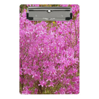 Lovely Pink Rhododendrons Floral Mini Clipboard