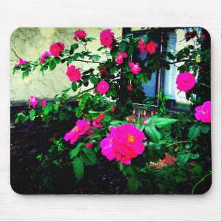 Lovely Pink Rose Bush Mouse Pad