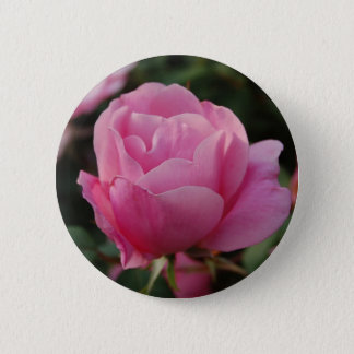 Lovely Pink Rose Button
