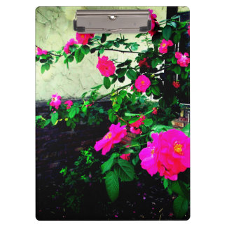 Lovely Pink Rose Clipboard