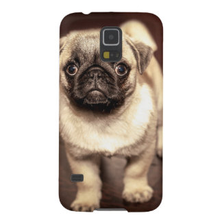Lovely Puppy Pug, Dog, Pet, Animal Galaxy S5 Cover
