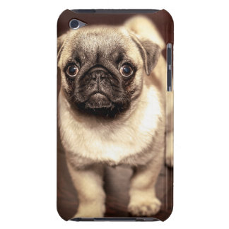 Lovely Puppy Pug, Dog, Pet, Animal iPod Case-Mate Cases