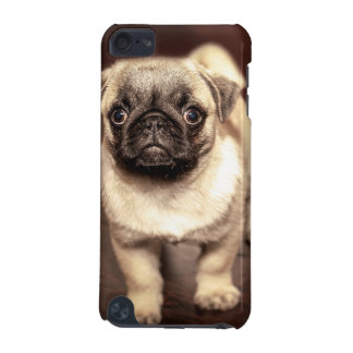 Lovely Puppy Pug, Dog, Pet, Animal iPod Touch (5th Generation) Cases