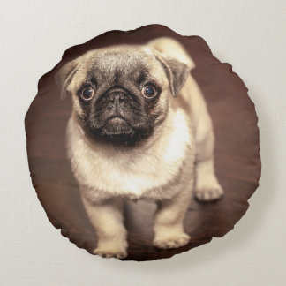 Lovely Puppy Pug, Dog, Pet, Animal Round Cushion