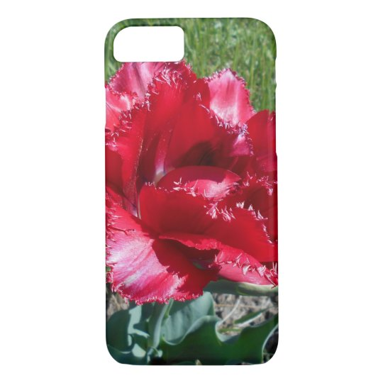 Lovely Red Tulip iPhone 7 Case