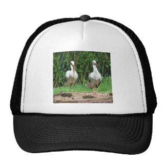 Lovely Stork Mesh Hat