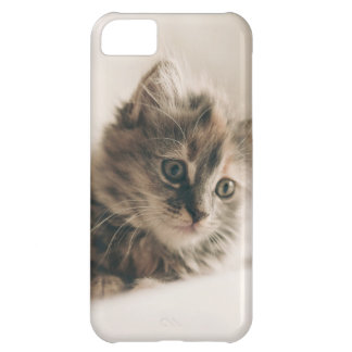 Lovely Sweet Cat Kitten Kitty iPhone 5C Case