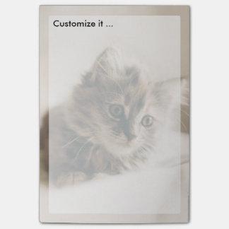 Lovely Sweet Cat Kitten Kitty Post-it® Notes