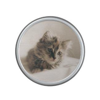 Lovely Sweet Cat Kitten Kitty Speaker