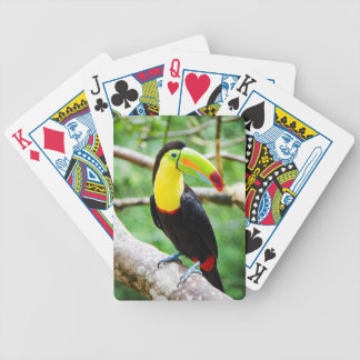 Lovely Toucan Bicycle Playing Cards