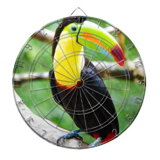 Lovely Toucan Dartboard