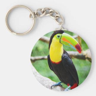 Lovely Toucan Key Ring