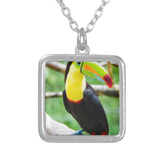 Lovely Toucan Silver Plated Necklace