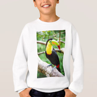 Lovely Toucan Sweatshirt