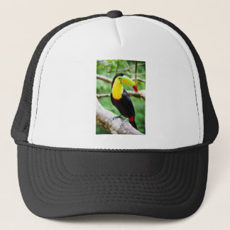 Lovely Toucan Trucker Hat
