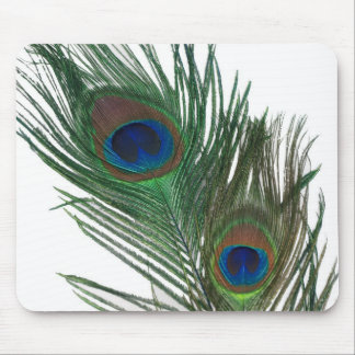 Lovely White Peacock Feather Mouse Pad