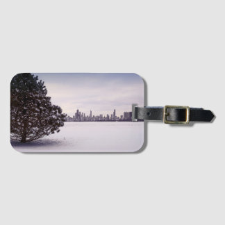 lovely winter Chicago - luggage tag