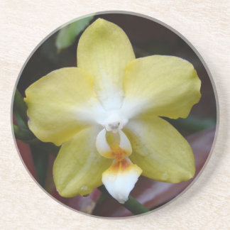 Lovely Yellow Orchid Coaster