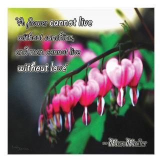 Love's Flower Photographic Print