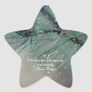 Loving Heart...Star Sticker - Wet Leaves